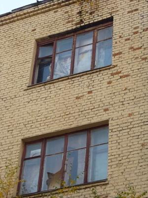 Порядок признания квартиры непригодной для проживания