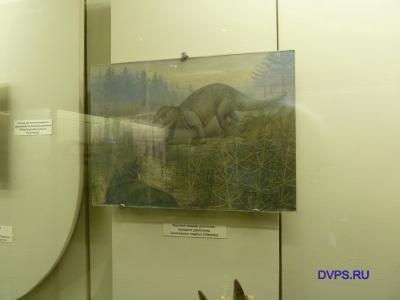 Крупная хищная рептилия - текодонт уралозавр, Uralosaurus magnus (Otschev)