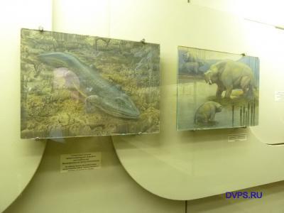 Гигантская хищная капитозавроидная амфибия мастодонзавр, Mastodonsaurus torvus Konzhukova