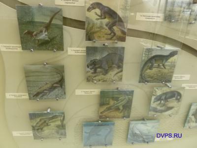 Архозавры, Archosauria