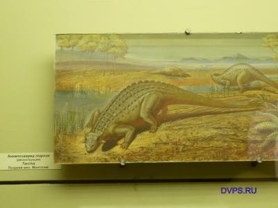 Анкилозаврид тархия