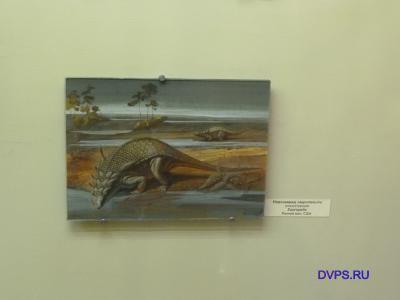 Нодозаврид завропельта Sauropelta Ранний мел, США