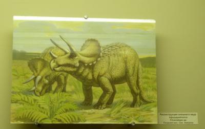 Реконструкция внешнего вида трицератопса Triceratops sp. Поздний мел, Сев. Америка
