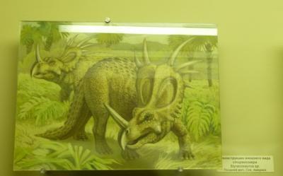 Реконструкция внешнего вида стиракозавра Styracosaurus sp. Поздний мел, Сев. Америка.