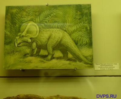 Реконструкция внешнего вида протоцератопса Protoceratops andrewsi Granger of Gregory.