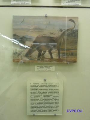 Прозавропод платеозавр Plateosaurus sp. Поздний триас, Западная Европа
