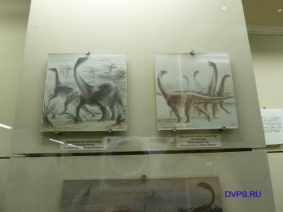 Прозавропод платеозавр Plateosaurus sp. Поздний триас, Западная Европа.